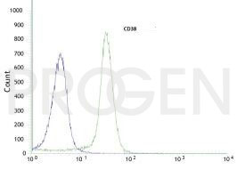 anti-CD38 mouse monoclonal, FS02, purified