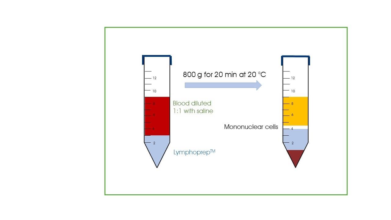 LymphoPrep™ (4x250 ml)
