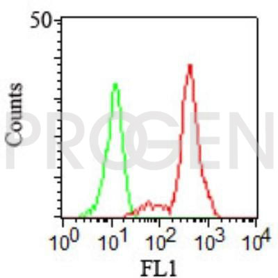 anti-CD11c mouse monoclonal, EBS-CD-011, purified