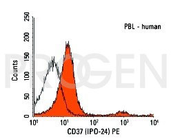 anti-CD37 mouse monoclonal, IPO-24, purified